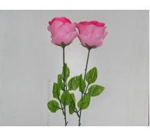 Роза. высота 65см.